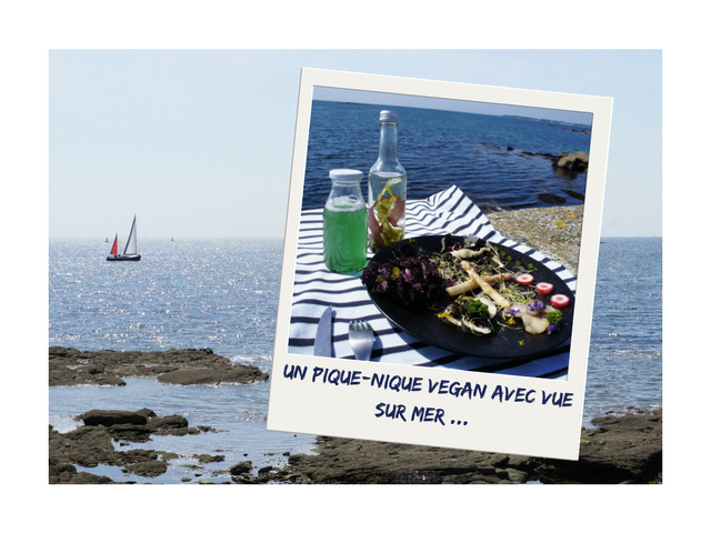 pique-nique-vegan-vue-sur -ocean-avec-thomas-spiruline-alguii-juliefromcc